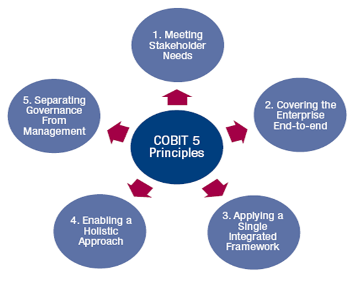 cobit principles